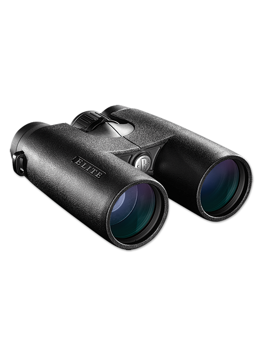 Бинокль Bushnell ELITE 10X42 ED RAINGUARD/XTR & Magnesium